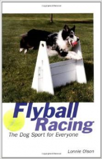 Flyball Racing: The Dog Sport for Everyone